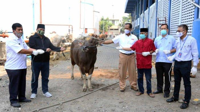 Bogasari Salurkan Puluhan Hewan Kurban untuk Warga Sekitar Pabrik