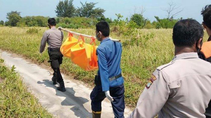 Mayat Bocah Laki-laki Gunakan Baju Spongebob Ditemukan di Pulau Pari
