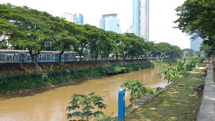 Tinja jadi Faktor Terbesar Pencemaran Air Sungai di Jakarta, Warga Diingatkan Bahaya Bakteri E-Coli