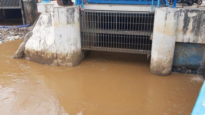 KONDISI Terkini Ketinggian Air di 13 Sungai di Jakarta, Sabtu 1 Februari 2020 dan Cuacanya