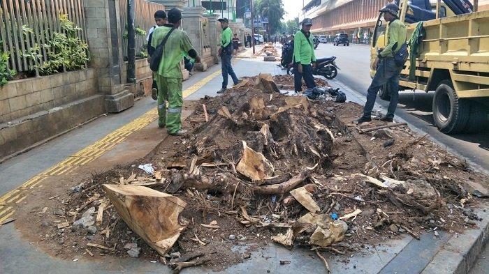 Panjang Trotoar Baru Jakarta Dipangkas 8 Kilometer
