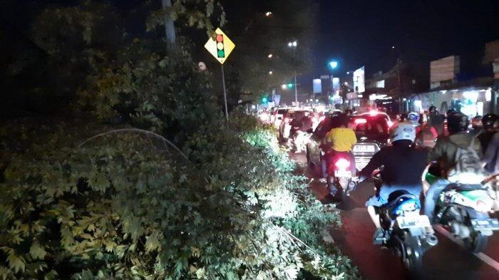 Pohon Tumbang di Jalan Raya Bogor KM 36 Depok, Tutup Sebagian Jalan