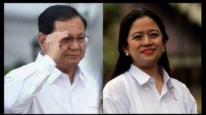 Pilpres 2024, Prabowo Subianto dan Puan Maharani Meraih Dukungan Terbanyak Versi Polmatrix Indonesia