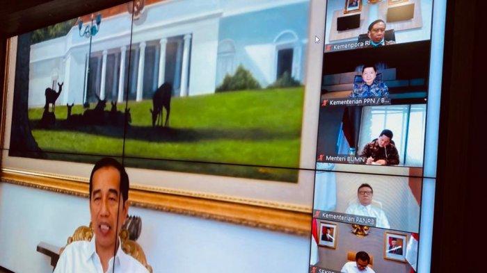 Perdana, Cegah Virus Corona Rapat Terbatas Presiden Jokowi dengan Menteri Lewat Teleconference