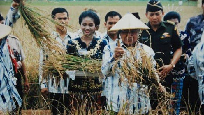 Sandingkan Potret Jokowi dan Soeharto Ketika Tinjau Petani, Denny Siregar : Ga Ada Kemajuan