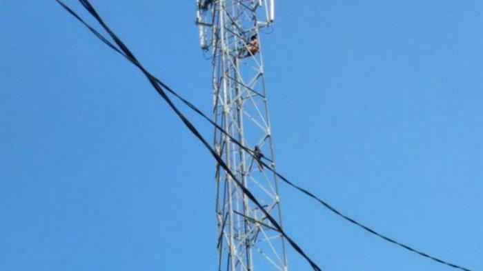 Dikira Suara Benda Jatuh, Mansyur Gemetar Lihat Seorang Pria Tewas Terjun Bebas dari Tower 30 Meter