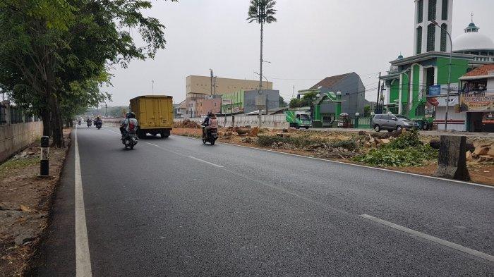 Kontraktor Empat Proyek di DKI Bakal Tanggung Jawab soal Penebangan Pohon