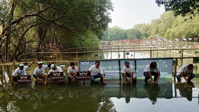 Peduli Lingkungan, Wahana Honda Tanam 10.000 Pohon Bakau di Hutan Mangrove Angke Kapuk