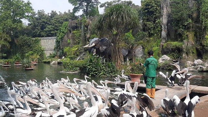 Pengunjung Ragunan KTP DKI Jakarta Tembus 17.485 Orang saat Libur Lebaran