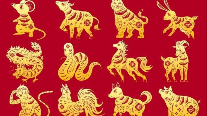 Ramalan SHIO Selasa (23/2) Kelinci dan Monyet Lihat Investasi Bagus, Keberuntungan di Pihak Naga