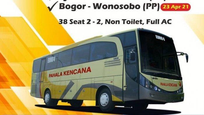 Pahala Kencana Luncurkan Bus VIP 38 Seat Rute Wonosobo, Berapa Ongkosnya?