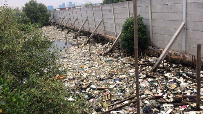 Penanganan Sampah Plastik dan Sampah Styrofoam di Hutan Mangrove Terkendala Akses