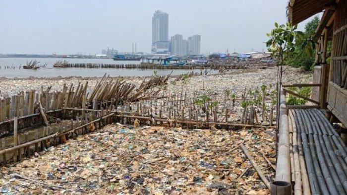 Sampah di Hutan Mangrove, Luas Area Menjadi Tumpukan Sampah Mencapai 150 Meter Persegi