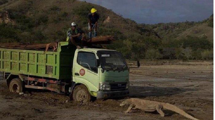 Diserang Buzzer usai Kritik soal Proyek 'Jurassic Park' TN Komodo, Bintang Emon Beri Balasan Menohok