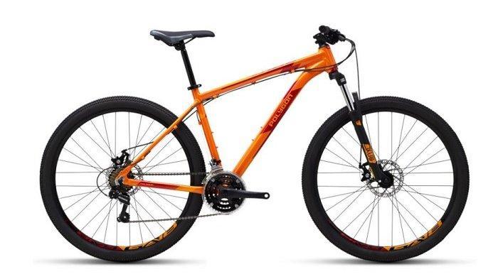 Cek Daftar Harga Sepeda Gunung Polygon di Kisaran Rp 2 Jutaan, Ada Juga Harga Sepeda Element SPY