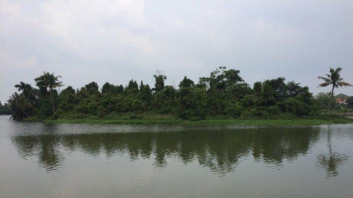Situ Citatah di Kelurahan Cirimekar, Kecamatan Cibinong