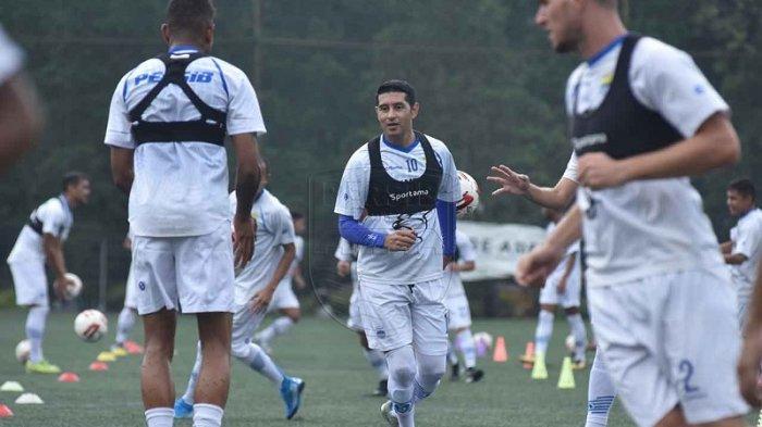Skuad Persib Bandung Kembali Berlatih, Robert Alberts: Fokus Menjaga Kebugaran