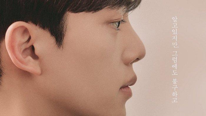 Aktor Song Kang dalam drama Korea terbaru berjudul Nevertheless