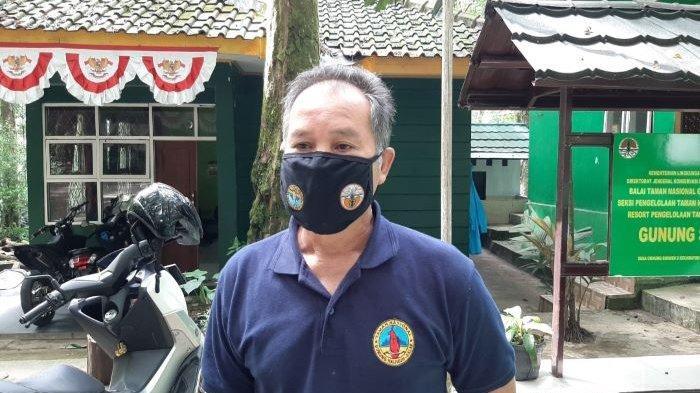 Liburan Imlek di Kabupaten Bogor, Wisatawan Tak Pakai Masker Dilarang Masuk ke Gunung Bunder
