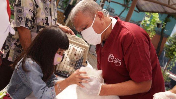 Waduh, Gara-gara Pandemi Covid-19, Ribuan Hewan Penular Rabies di Jakarta Selatan Gagal Divaksin