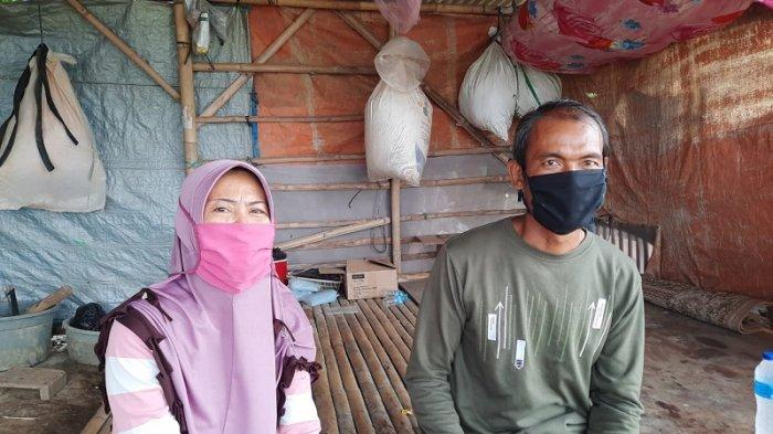 VIDEO Petani Genjer Bekasi Kewalahan Penuhi Permintaan Pasar