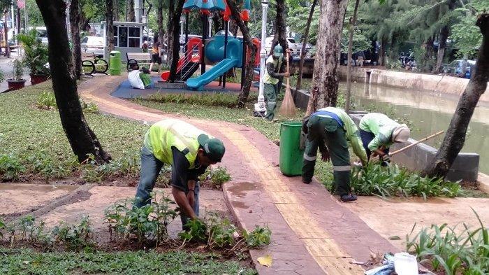 Sudin Pertamanan dan Kehutanan Jakarta Pusat Perbaiki Taman Rusak Akibat Banjir