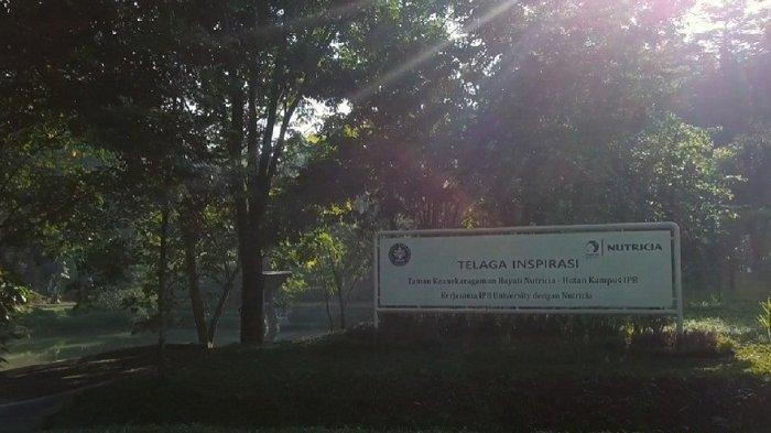 Taman Keanekaragaman Hayati (Kehati) Telaga Inspirasi IPB-Nutricia yang berlokasi di kampus IPB Darmaga, Bogor, kolaborasi IPB University bersama Danone Indonesia.