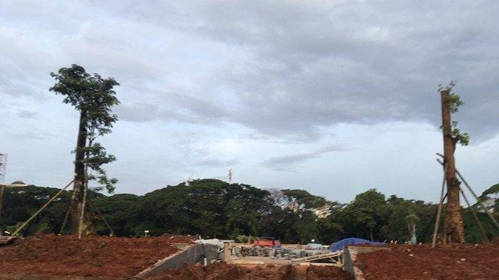 Dihujat Karena Penebangan Pohon di Monas, Pemprov DKI Tanami Kembali Lahan yang Telanjur Gersang