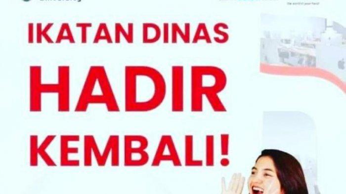 PT Telkom Indonesia Buka Beasiswa Ikatan Dinas, Lulus Bisa Langsung Kerja