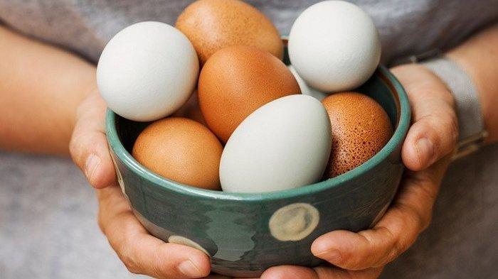 Manfaat Telur Untuk Asupan Nutrisi Otak Bayi dan Cegah Pikun Orang Tua