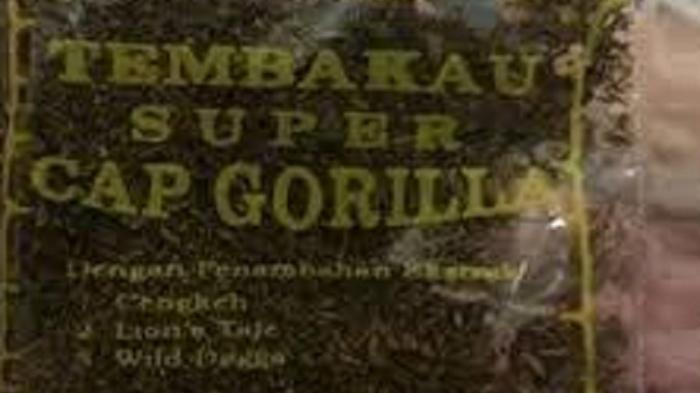 Tembakau Gorila Masuk Daftar Narkotika Golongan Satu, Pengguna dan Pengedar Bisa Dipidana