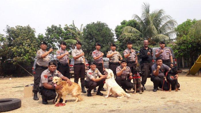 Video Melihat Tempat Pelatihan Anjing K 9 Yang Bantu Polisi Dalam Pengungkapan Kasus Warta Kota