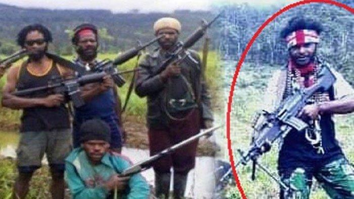 Jelang HUT OPM 1 Desember, TNI Sudah Tahu Lokasi Pemimpin KKB Papua Egianus Kagoya