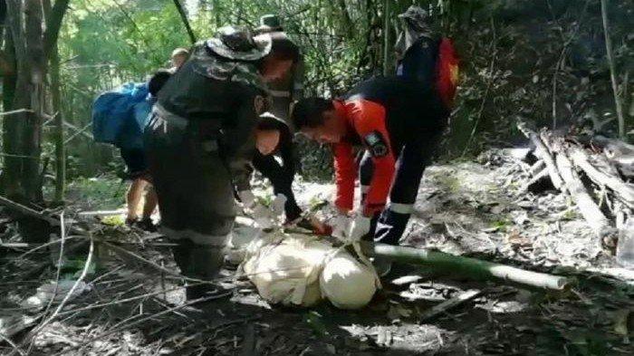 TERUNGKAP Pemandu Wisata Disengat Tawon hingga Mati Bikin Takut Wisatawan, Ini Kronologinya