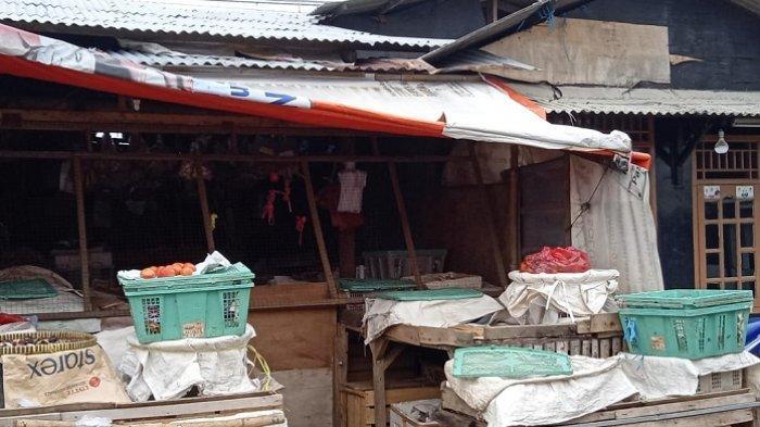 Jenis Ular di Pasar Kemirimuka Diyakini Sebagai Siluman Dipercaya Kadang Berubah Menjadi Kuntilanak