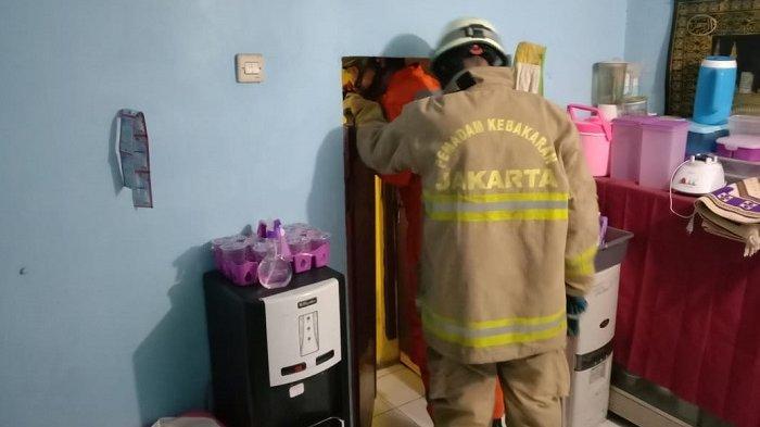 Dua Hari Berturut-turut Ular Kobra Satroni Rumah Warga Cipayung Jakarta Timur