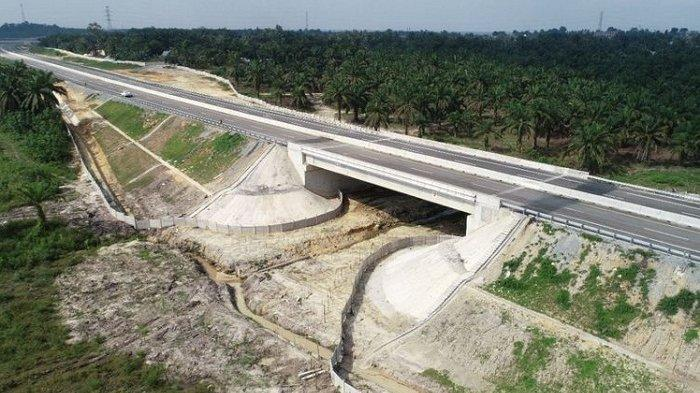 Diresmikan Presiden Jokowi, Ini 6 Fakta Tol Pekanbaru-Dumai yang Dilengkapi 4 Terowongan Gajah