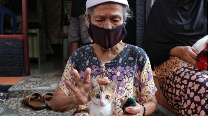 Pemerintah Jakarta Pusat Adakan Vaksin Rabies Gratis untuk 200 Hewan, Cek Syaratnya