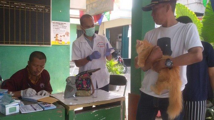 Hingga 15 Maret 2018, Ada 2.216 Hewan HPR Divaksin Rabies