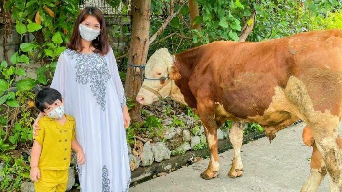 Bintang sinetron Vinessa Inez mengurbankan seekor sapi simental limosin dengan bobot 550 kg. Sapi itu dipotong didekat rumah Vinessa Inez, Rabu (21/7/2021).