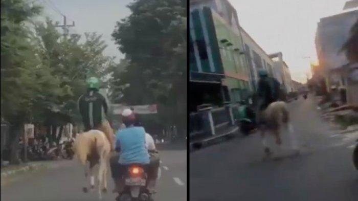 Viral Driver Ojol Naik Kuda Putih di Jalanan, Komentar Netizen: Itu Pangeran Menyamar Jadi Ojol