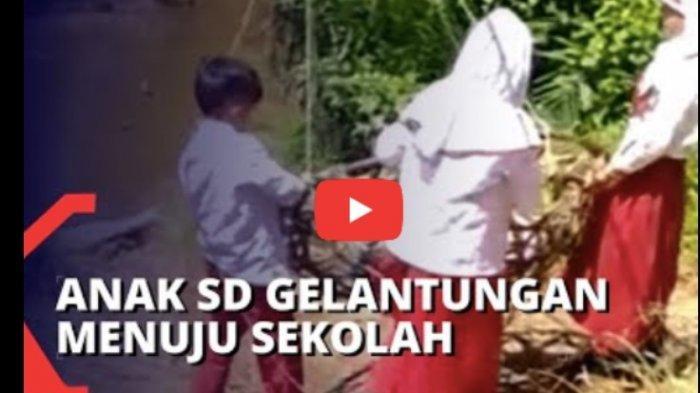 Viral Terkonfirmasi 3 Siswa SD Menyeberang Sungai Pakai Keranjang, Ternyata Begini Ceritanya