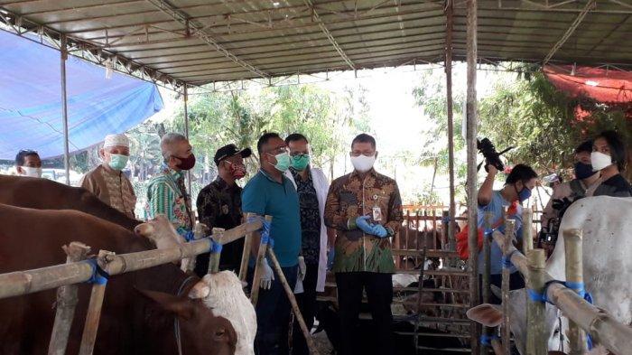 Boleh Jualan, Walikota Jaksel Minta Pedagang Hewan Kurban Wajib Mengisi CLM