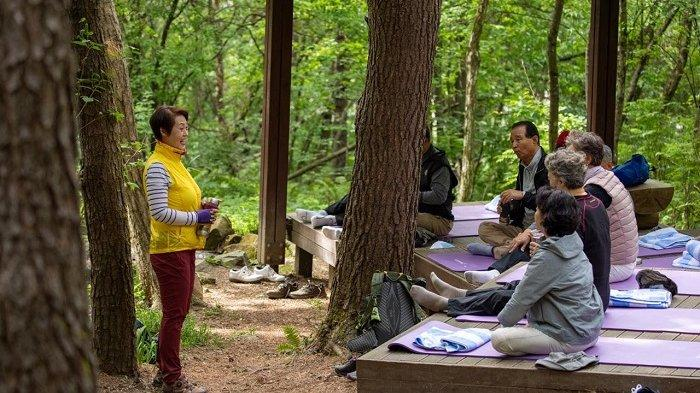 4 Kategori Wisata Wellness di Korea Selatan, Promosikan Gaya Hidup Sehat dan Sikap Positif