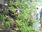 20151205-pohon-tumbang-di-rusunawa-jatinegara-barat_20151205_172827.jpg