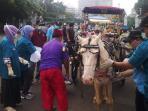 20160306berpenyakit-kuda-delman-monas-akan-ditertibkan_20160306_201942.jpg