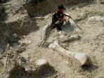 20170613-penemuan-fosil-gajah_20170613_021420.jpg