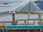 20171120inovasi-atap-plastik-untuk-cegah-hama-tanaman_20171120_125701.jpg