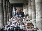 20180420dinas-lh-dki-akan-percepat-pengangkutan-sampah-di-kolong-tol2_20180420_221016.jpg