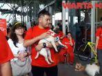 526-dog-lovers-meriahkan-event-dog-walks-2019-di-ice-bsd.jpg
